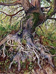 University Arts ($100) - Tree Imitating Life by Curtis Boyle