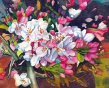 Cheap Joes ($100 + goody bag)  - Cherry Blossom in the Bonsai Garden by Jerry Carpenter