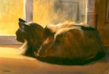 Picture Element ($150) - Sunny Spot For A Lazy Cat by Susan Gough