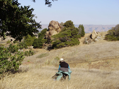 Plein Air painting at Coyote Hills